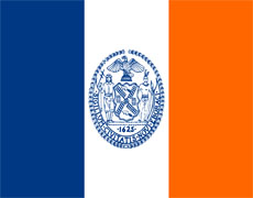 New York City Flag Resized
